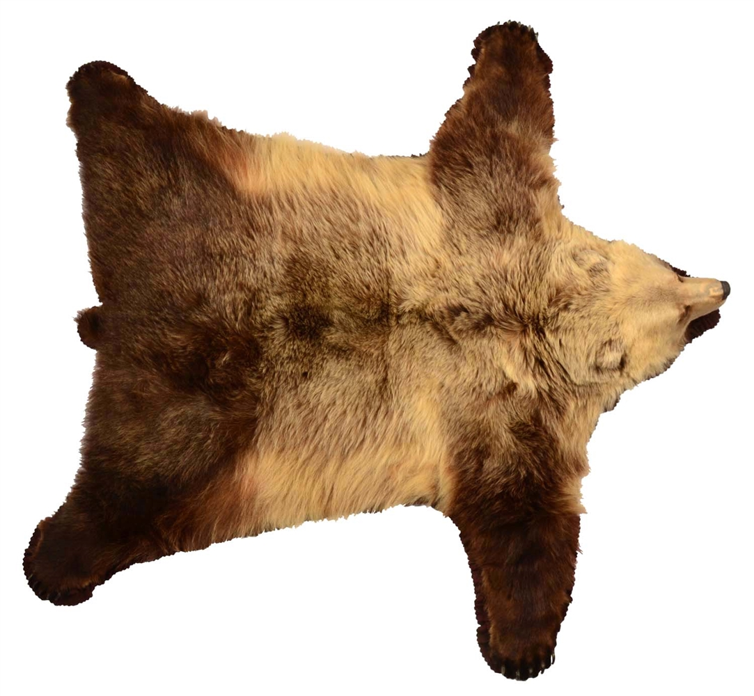 Fantastic Grizzly Bear Full Rug.